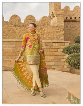Cosmos-Noor Luxury | Pakistani Salwar Suits